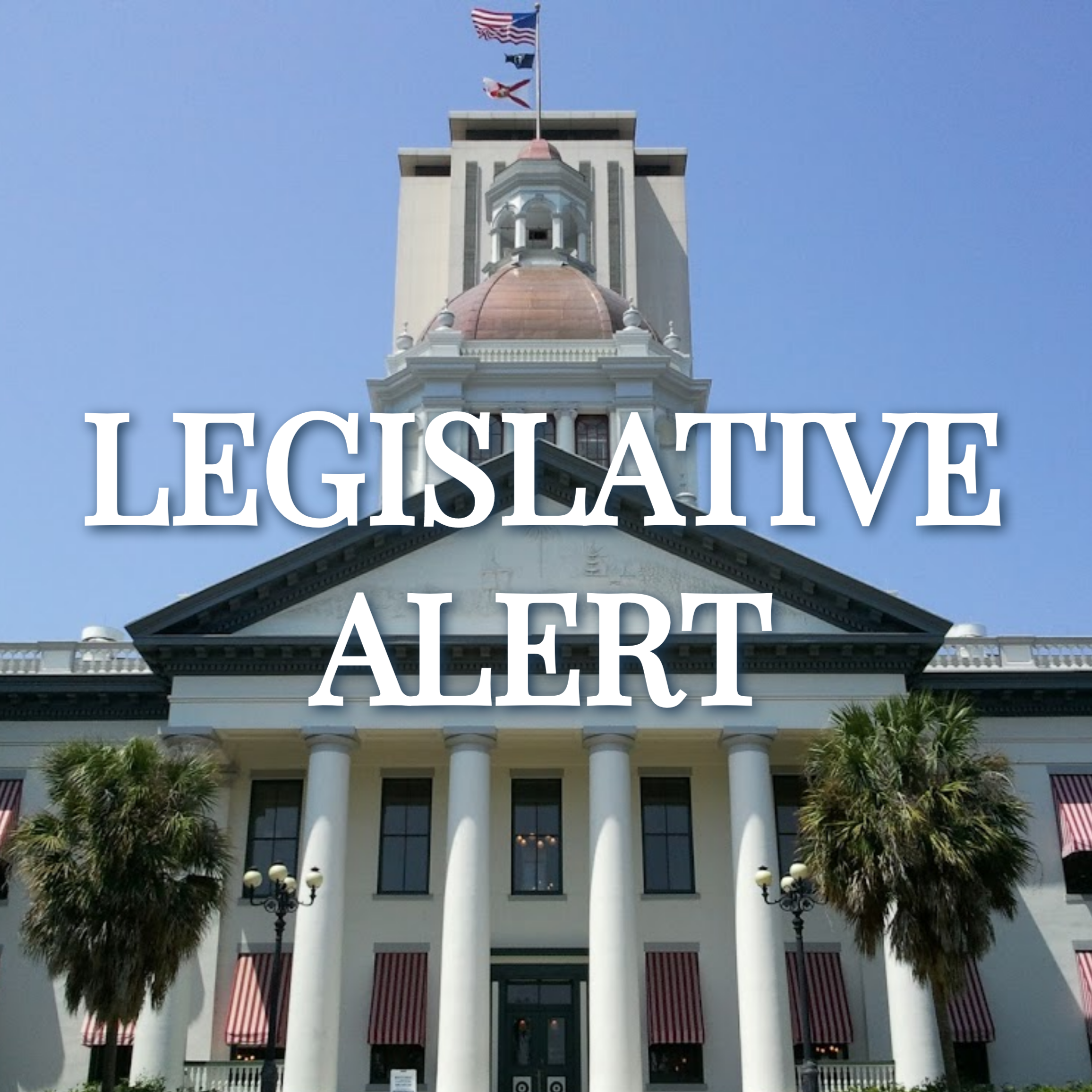 Florida Alert!  House Committee Takes on Assisted Living Deregulation Bill Image